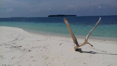 cocohuts_island2